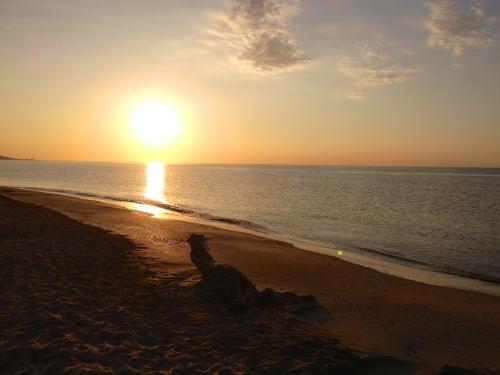 plage sète.jpg