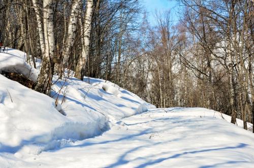 chemin neige.jpg