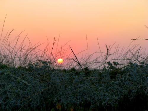 coucher soleil crète 2.jpg
