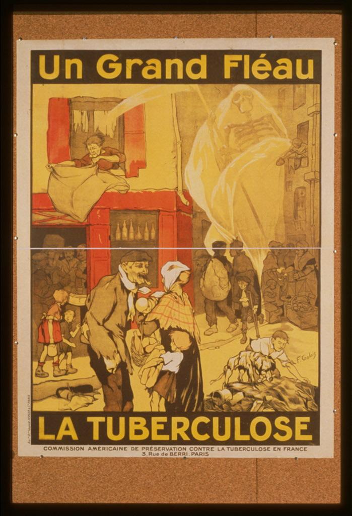 Fléau_de_la_tuberculose.jpg