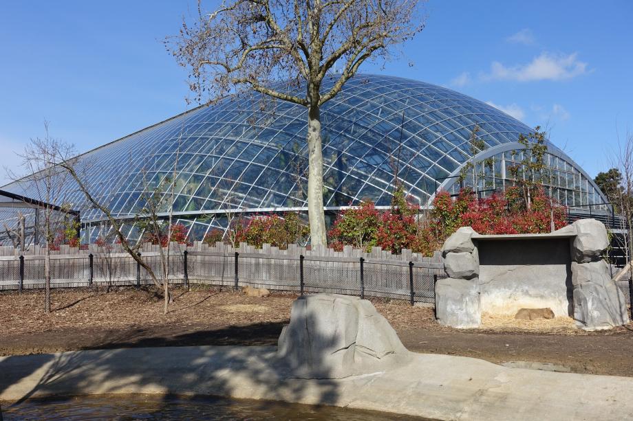 Greenhouse_@_Parc_Zoologique_de_Paris_(Zoo)_@_Paris_(25741091314)