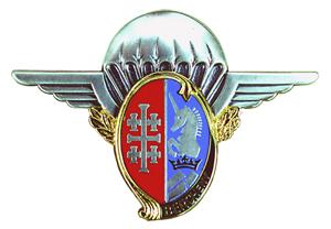 Insigne_régimentaire_du_1er_régiment_de_hussards_parachutistes