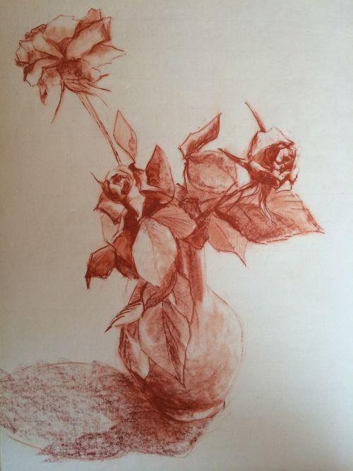 mousseline de roses