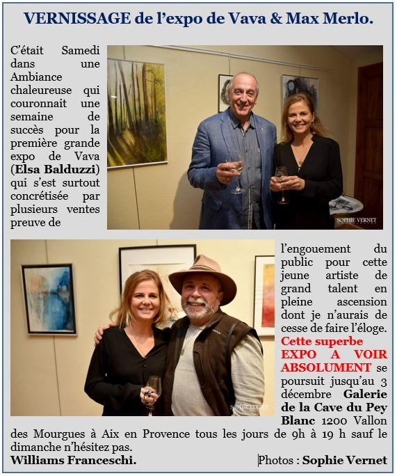 Capture article sur le vernissage.JPG