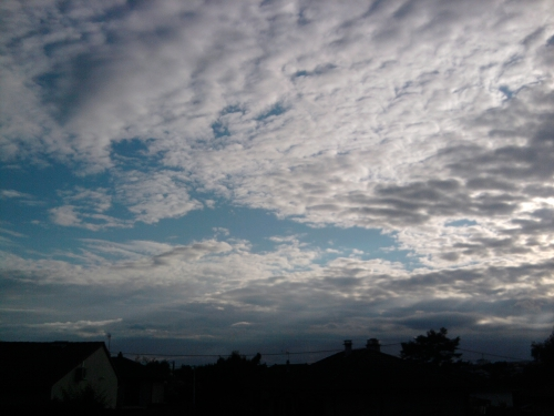 Photo1681.jpg