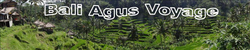 Bali Agus Voyage