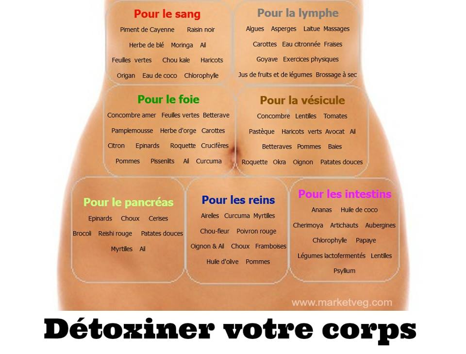 detoxiner le corps.jpg