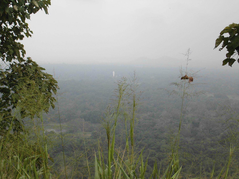 1 matin - Sigiriya lion's rock (53).JPG
