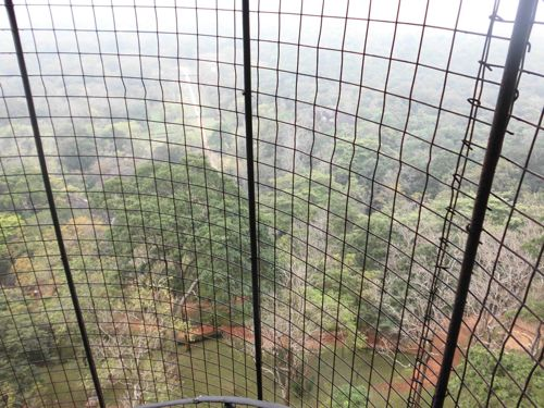 1 matin - Sigiriya lion's rock (51).JPG