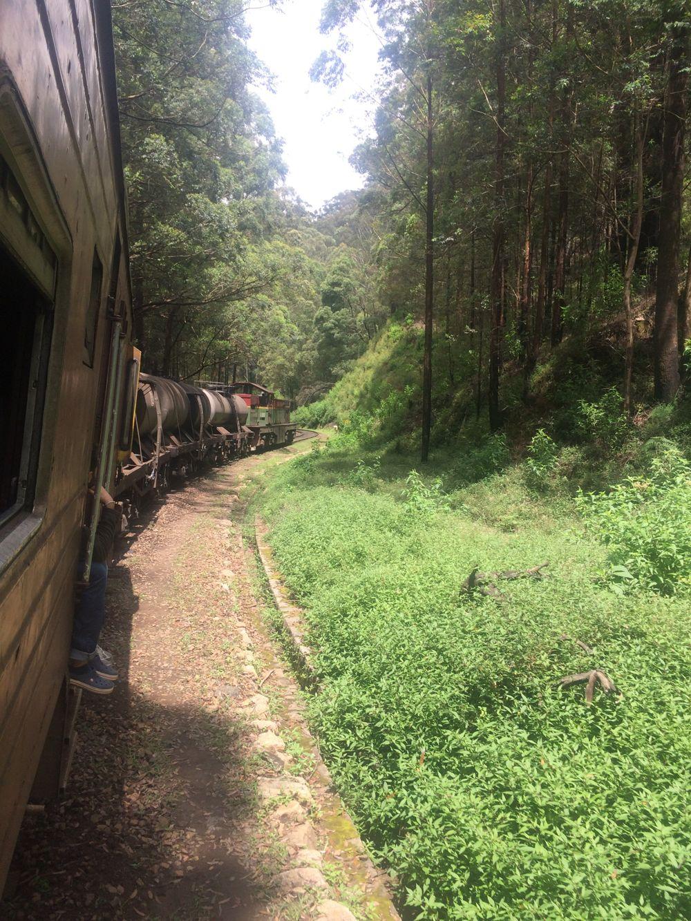 19 fev - train Nuwara to Ella (18).jpg