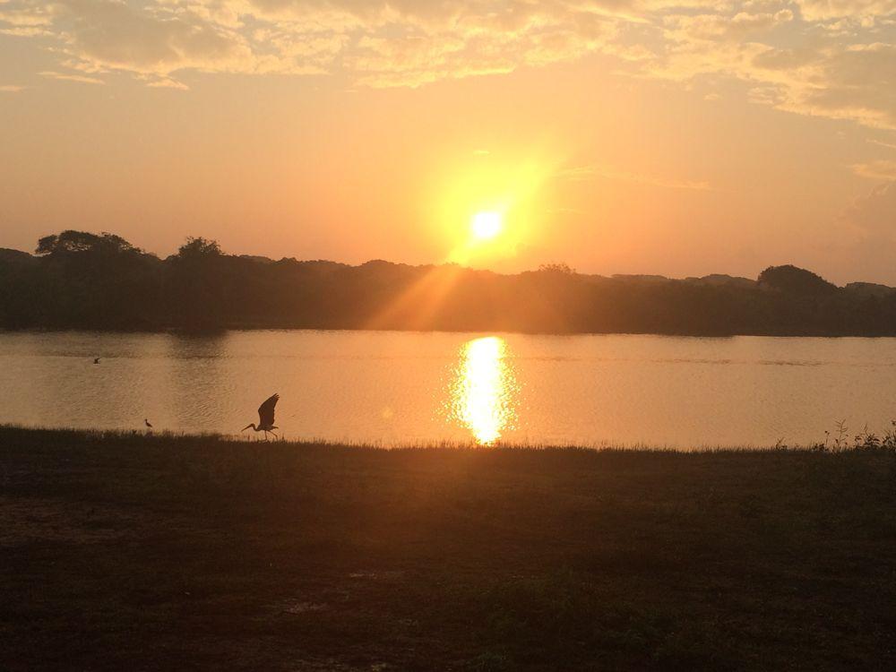 20 fev - Safari au parc Yala (17).JPG