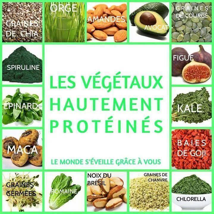 proteines vg.jpg