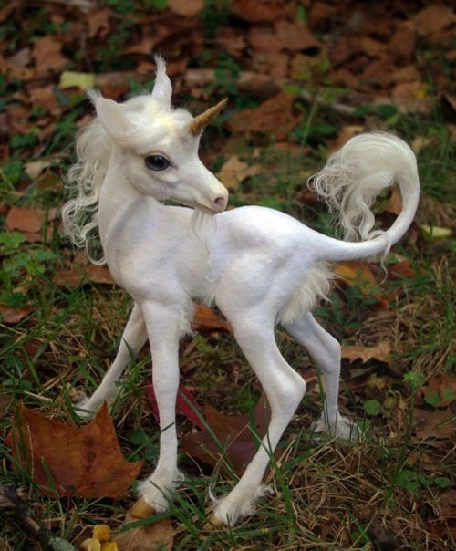 bebe-licorne.jpg