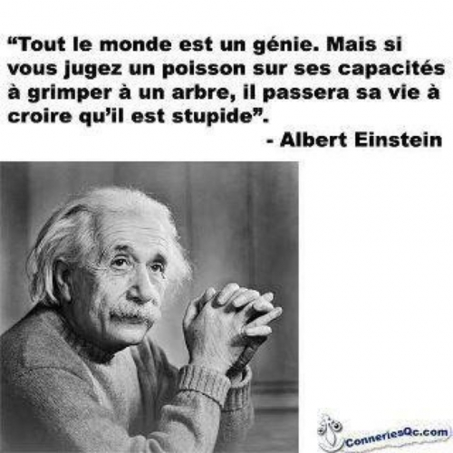 einstein-citation-poisson.jpg