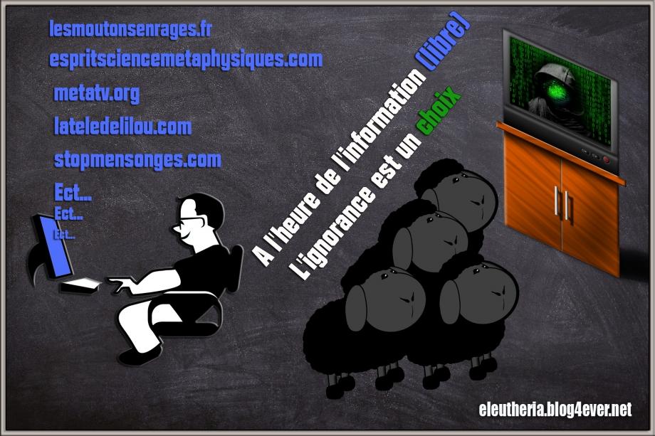 eleutheria.blog4ever.net a l'ère de l'information l'ignorance est un choix.jpg