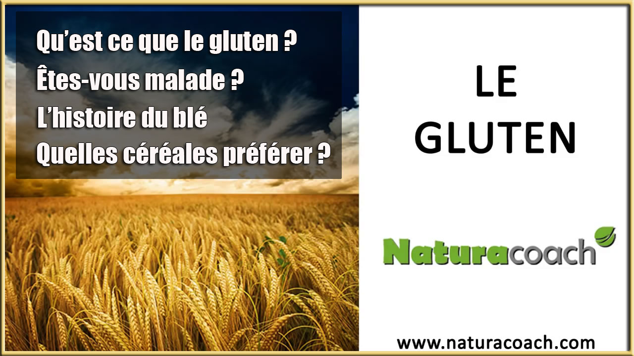 www.eleutheria.blog4ever.net-le-gluten.jpg