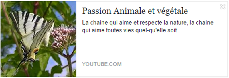 eleutheria.blog4ever.net Passion Animale et végétale meilleur chaine youtube.png