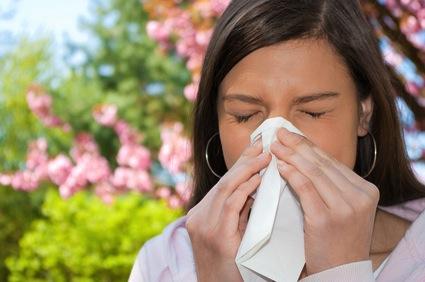 www.eleutheria.blog4ever.net-allergies remede de grand mere.jpg