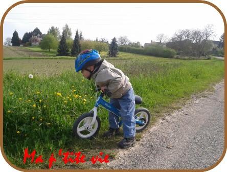 bloggif_54339e8fc6951.jpg