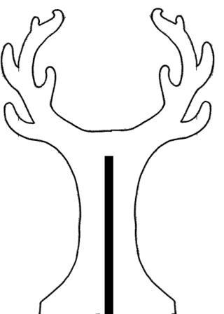 arbre face1.jpg