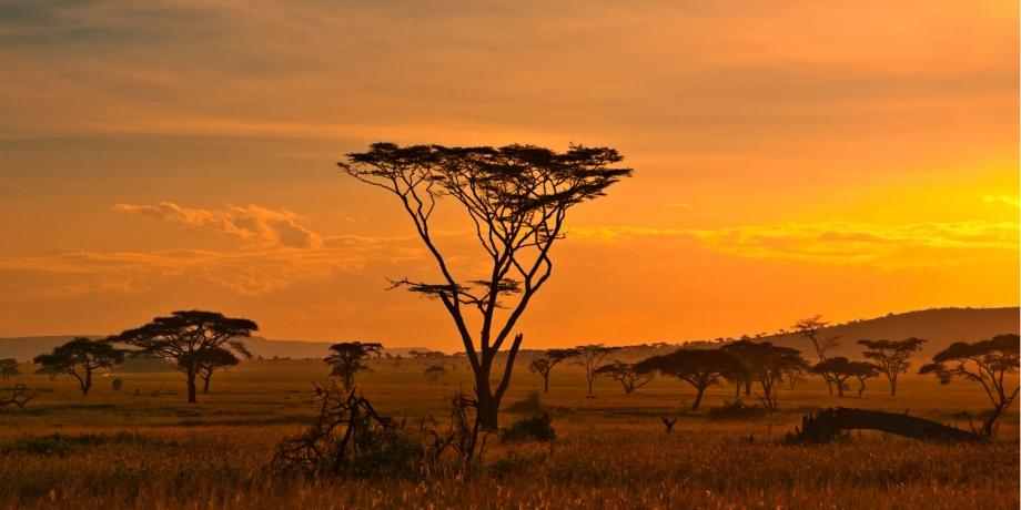 voyage-afrique-du-sud-location-villas-de-vacances-cape-town.jpg
