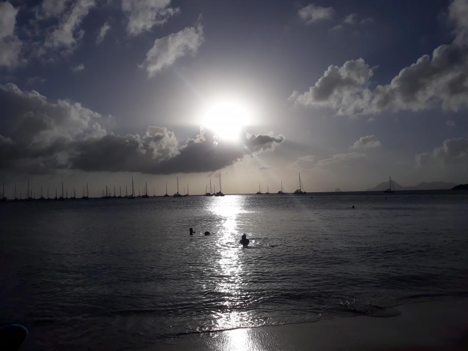 martinique plage de pointe marin