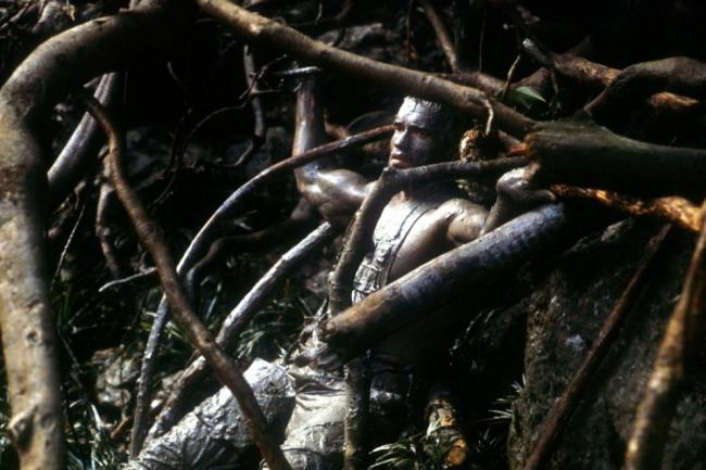 predator-1987-04-g.jpg
