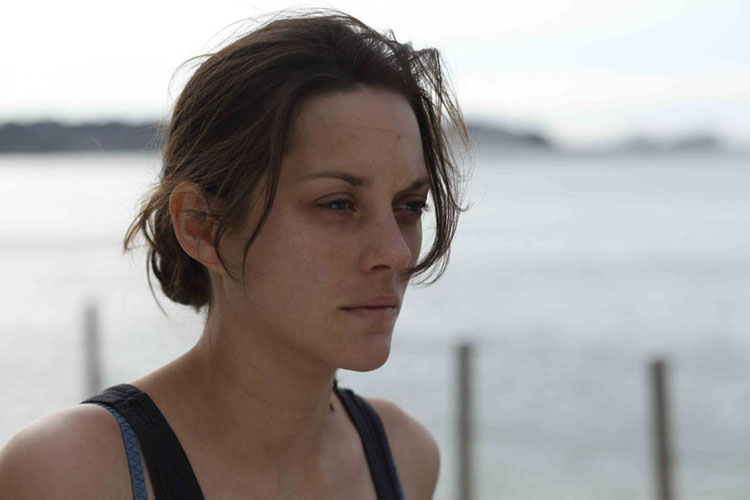 17-DE-ROUILLE-ET-D-OS-Marion-Cotillard-copyright-Roger-Arpajou-Why-Not-Productions.jpg