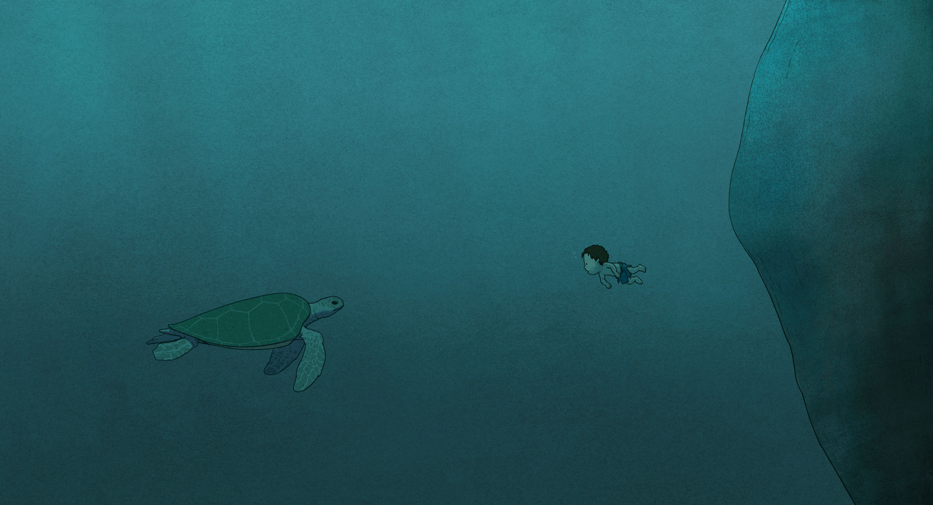 la-tortue-rouge-12.jpg