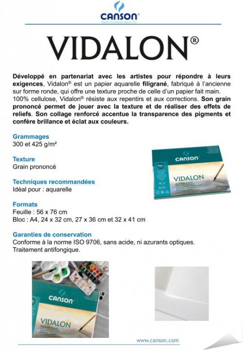 Vidalon_page_001.jpg