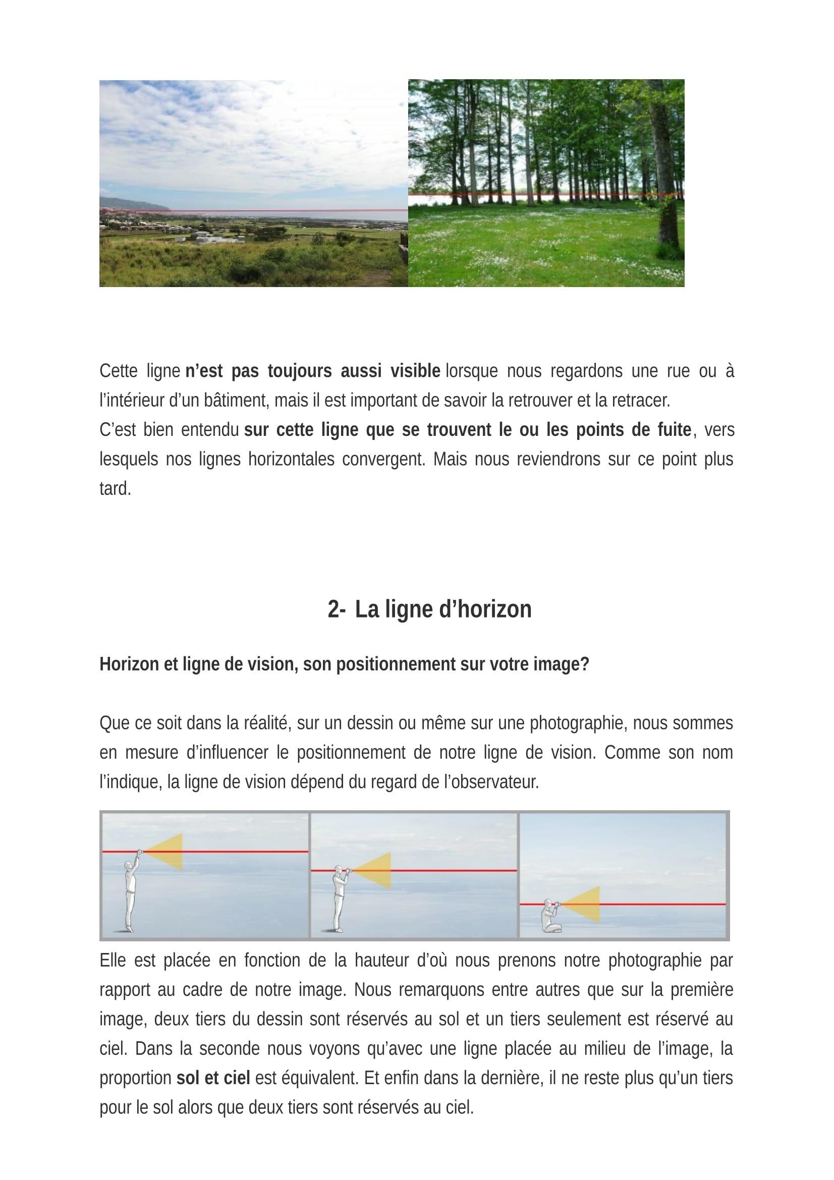 LES_5_R+êGLES_POUR_BIEN_DESSINER_EN_PERSPECTIVE_Acanthe-05[1].jpg