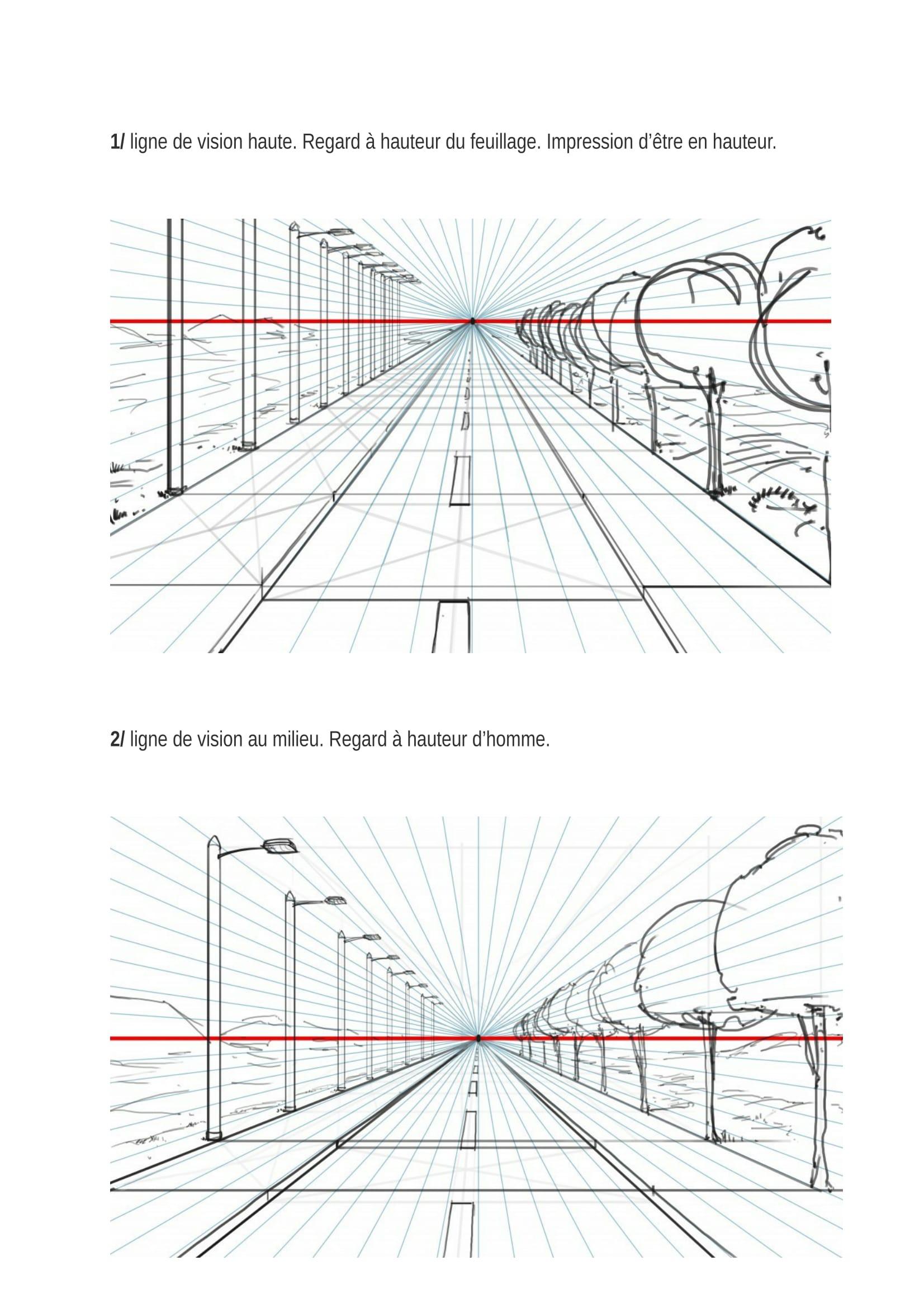 LES_5_R+êGLES_POUR_BIEN_DESSINER_EN_PERSPECTIVE_Acanthe-06[1].jpg