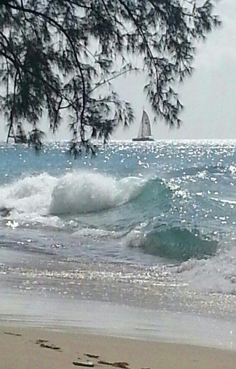 Bord de mer avec soleil irrisant.jpg
