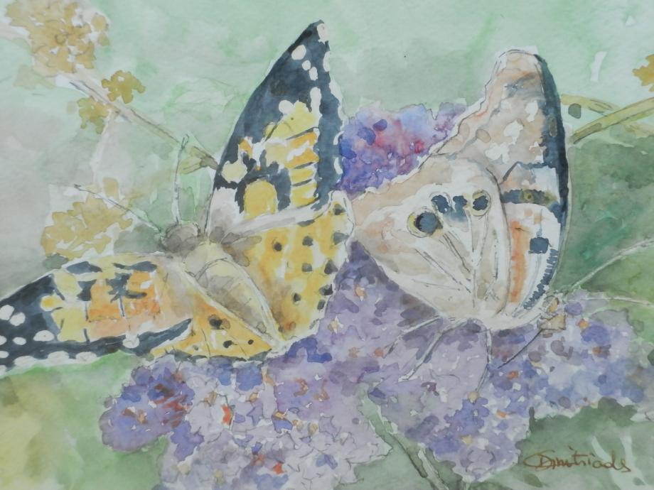 Papillons éphémères.JPG