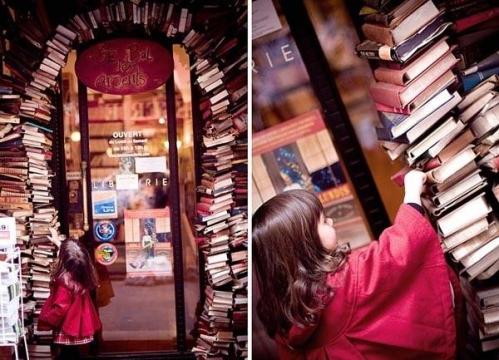 La-Librairie-Le-Bal-des-Ardents-a-Lyon_portrait_w858.jpeg