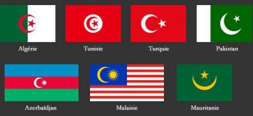 drapeau_croissant_lune_etoile_seule.jpeg