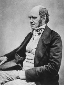 Darwin-227x300.jpg