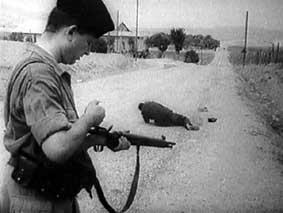 guerre-algerie1.jpg