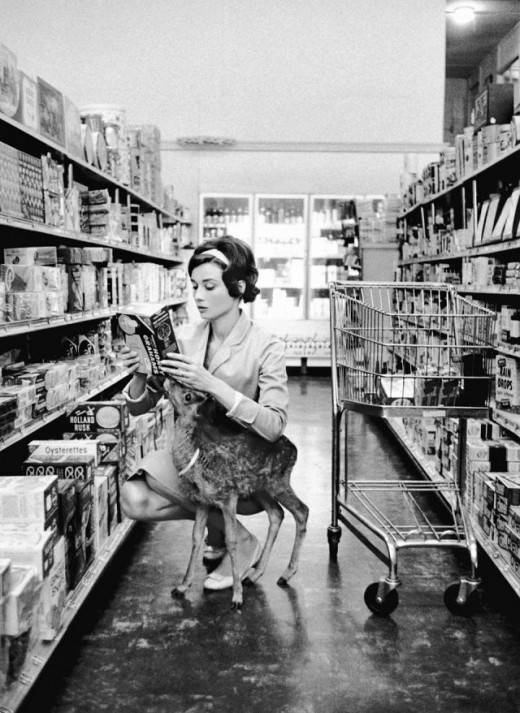 Audrey-Hepburn-and-her-pet-deer-520x7132.jpg