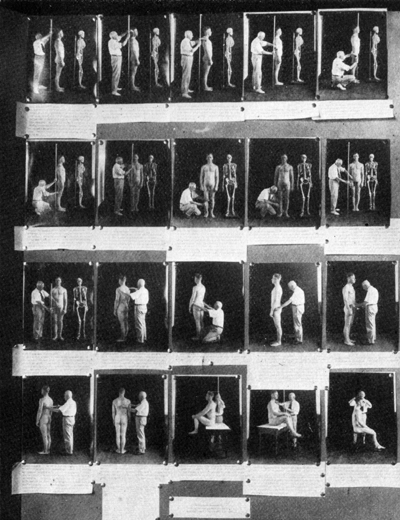 Anthropometry_exhibit.jpg
