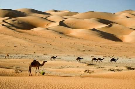 ME_Desert_enCA.jpg
