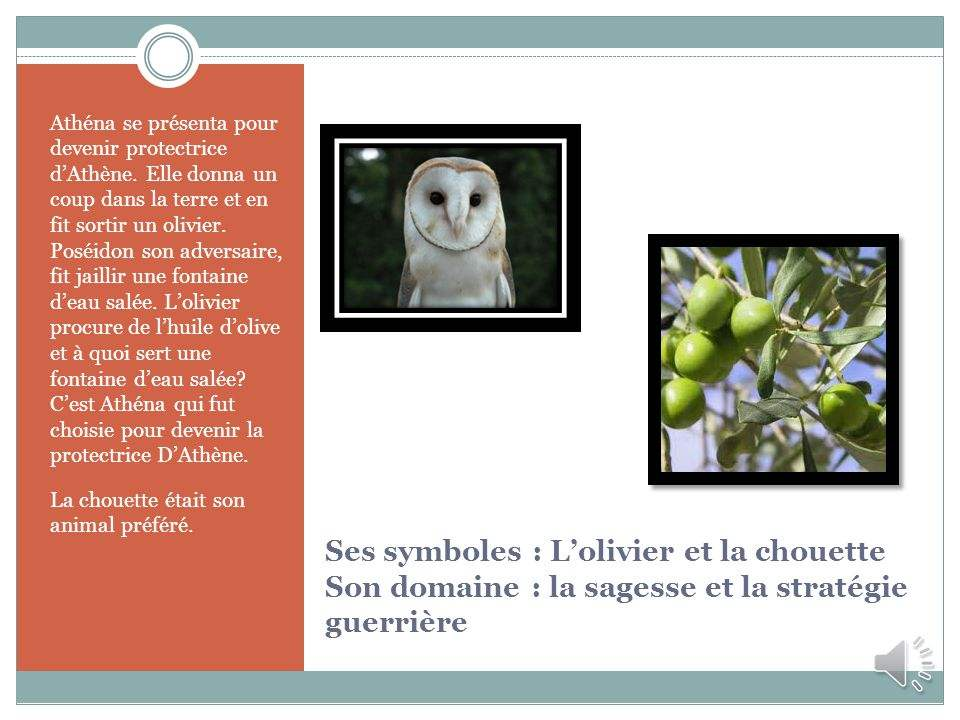 slide_7.jpg