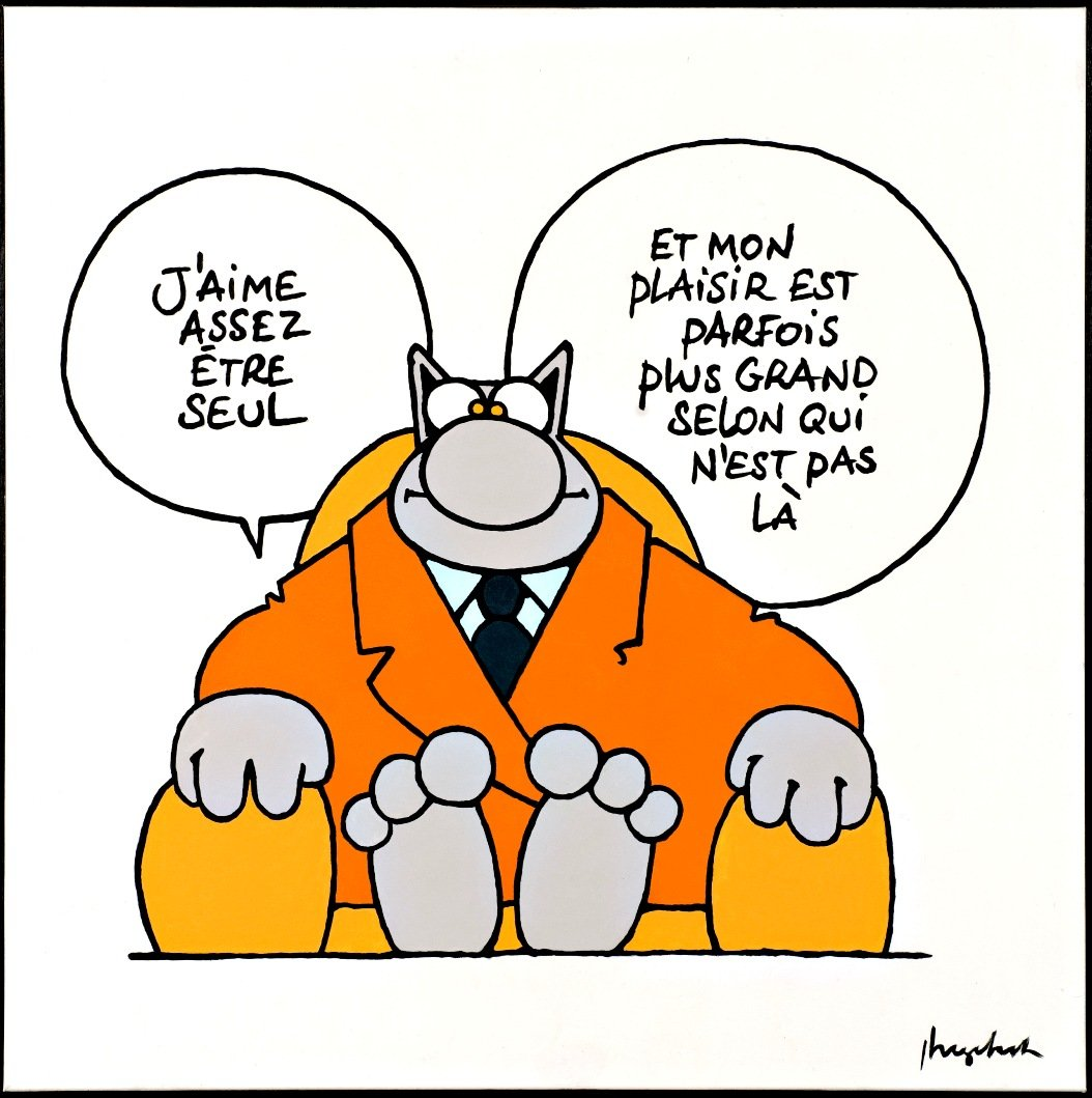le_chat_geluck_application.jpg