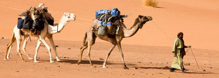 desert-touareg-1.jpg