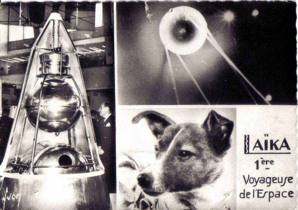 Retroactu-Le-3-novembre-1957-la-chienne-Laika-s-envole-dans-l-espace_width1024.jpg
