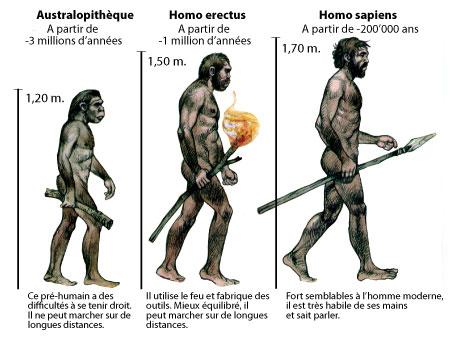 Evolution_homme.jpg