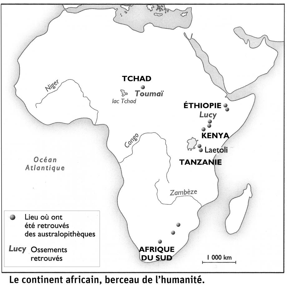 carte-afrique_lucy-toumai.jpg