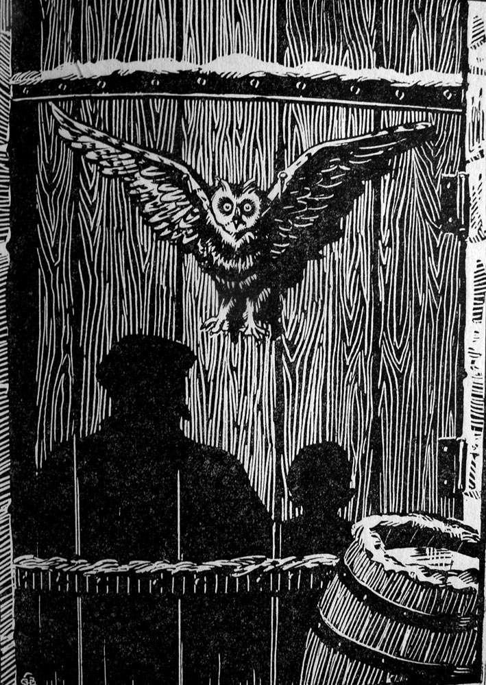 Caract ristiques des chouettes et des hiboux owls club for Briser un miroir conjurer le sort