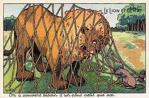 LionRat.jpg