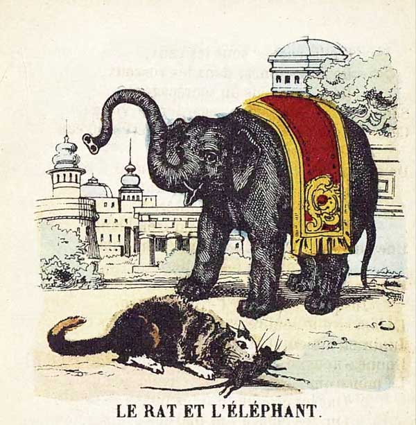 RatElephant.jpg